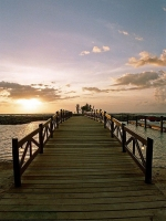Fiji Islands - Wonderful sea - Exotic Nature-Romantic Atmosphere!!